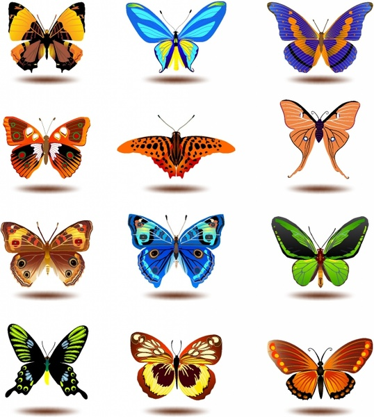 Monarch Butterfly svg #8, Download drawings