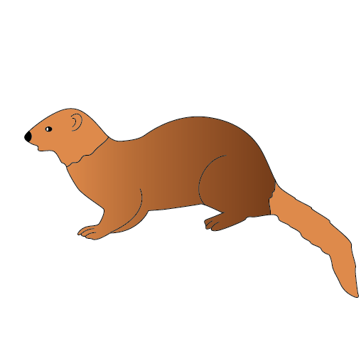 Mongoose clipart #5, Download drawings