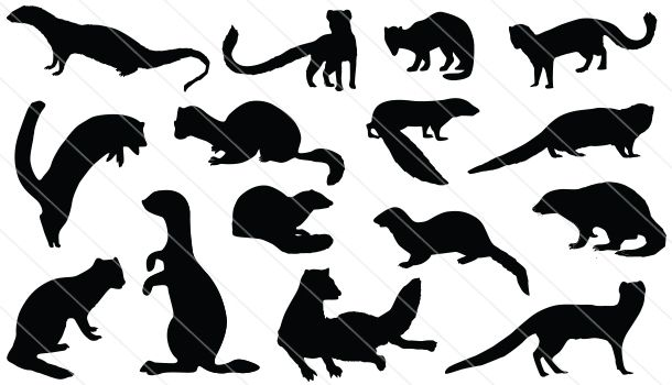 Mongoose Girl svg #19, Download drawings