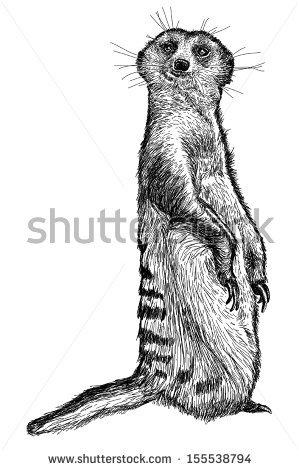 Mongoose Girl svg #11, Download drawings