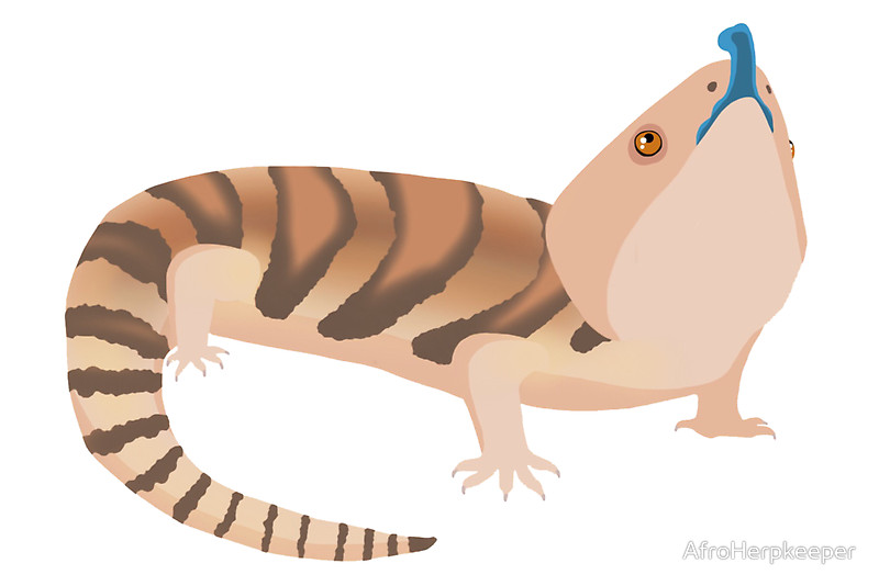 Monitor Lizard clipart #2, Download drawings