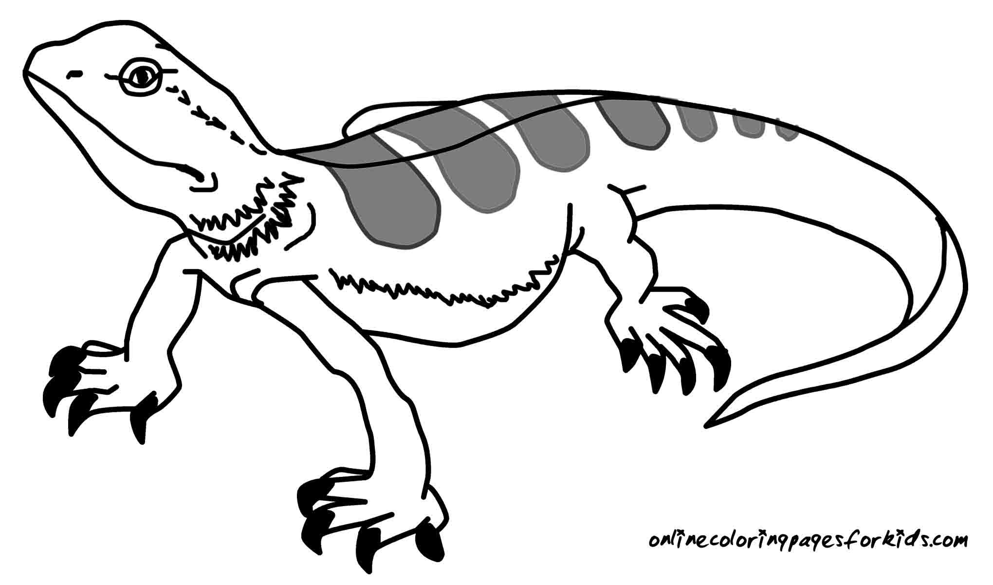 Monitor Lizard coloring #13, Download drawings