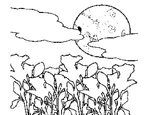 Moonloght coloring #9, Download drawings