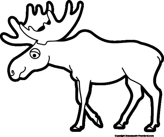 Moose clipart #12, Download drawings