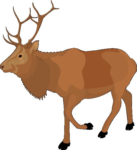 Moose clipart #5, Download drawings