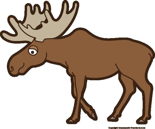 Moose clipart #13, Download drawings