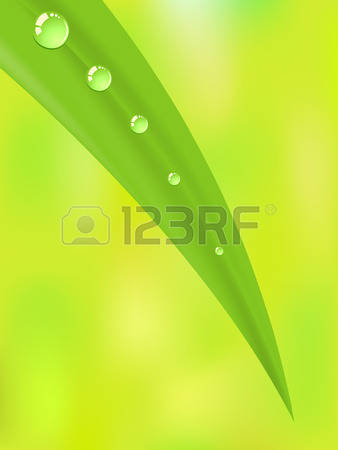 Morning Dew clipart #6, Download drawings