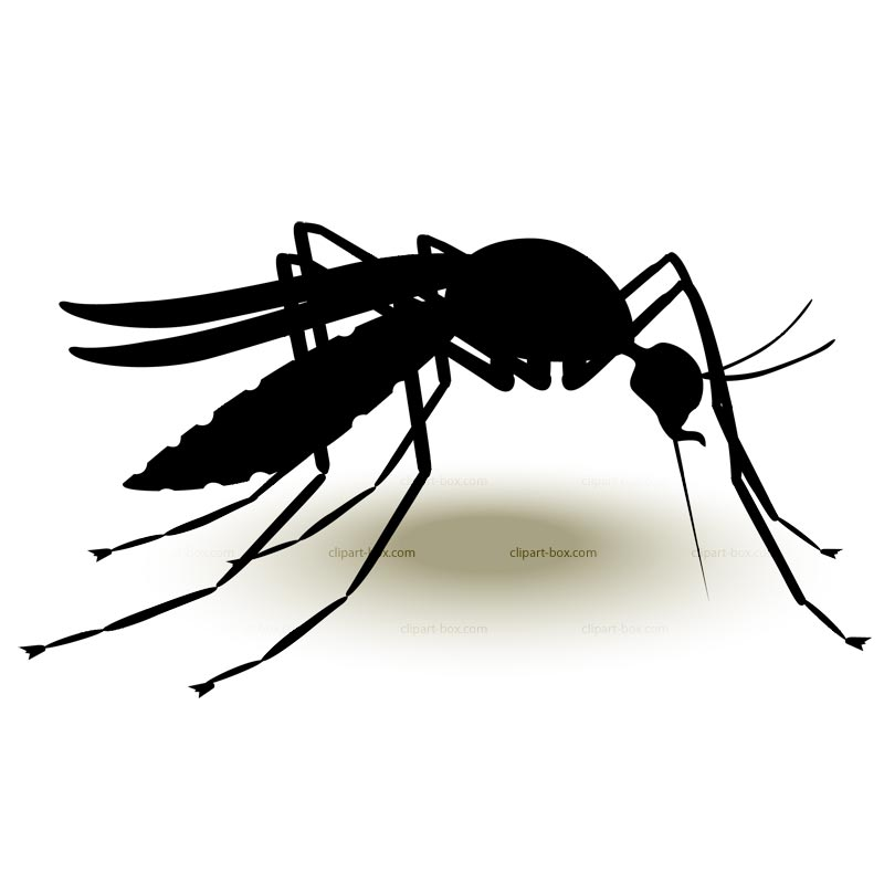 Mosquito clipart #17, Download drawings