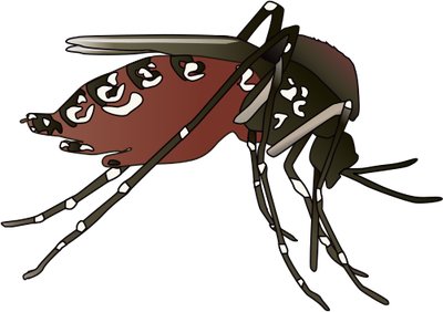 Mosquito svg #15, Download drawings
