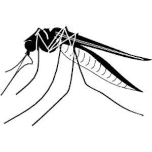 Mosquito svg #14, Download drawings