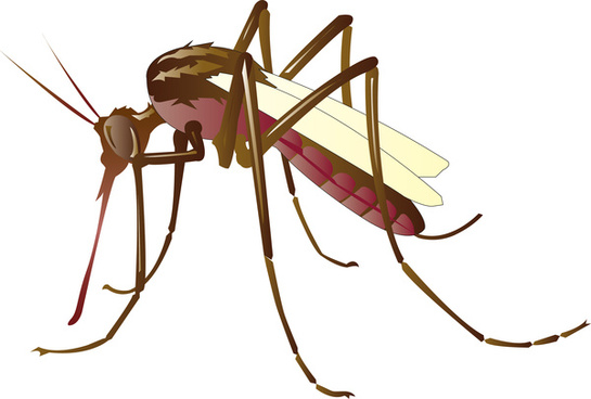 Mosquito svg #11, Download drawings