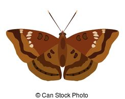 Moth clipart #14, Download drawings