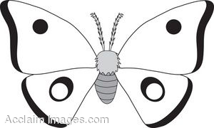 Moth clipart #2, Download drawings