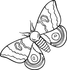 Moth clipart #6, Download drawings