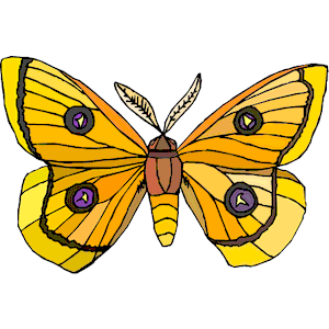 Moth clipart #7, Download drawings