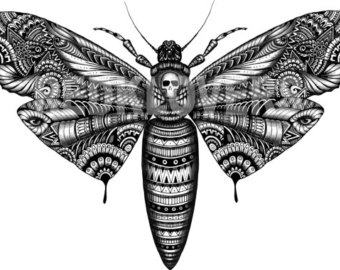 Moth svg #14, Download drawings
