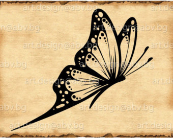 Moth svg #12, Download drawings