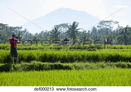 Mount Agung clipart #4, Download drawings