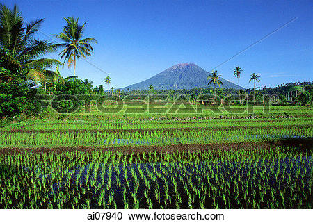Mount Agung clipart #19, Download drawings