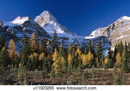 Mount Assiniboine clipart #16, Download drawings