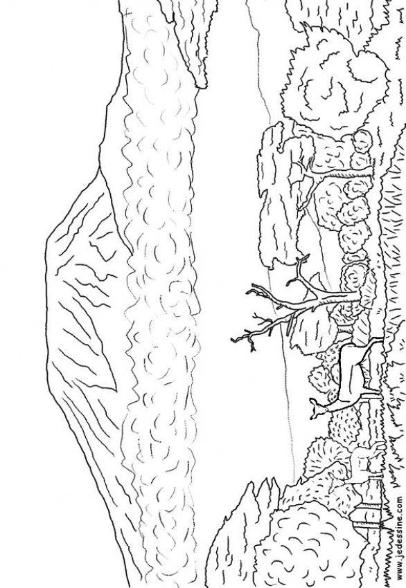 Mount Kilamanjaro coloring #2, Download drawings