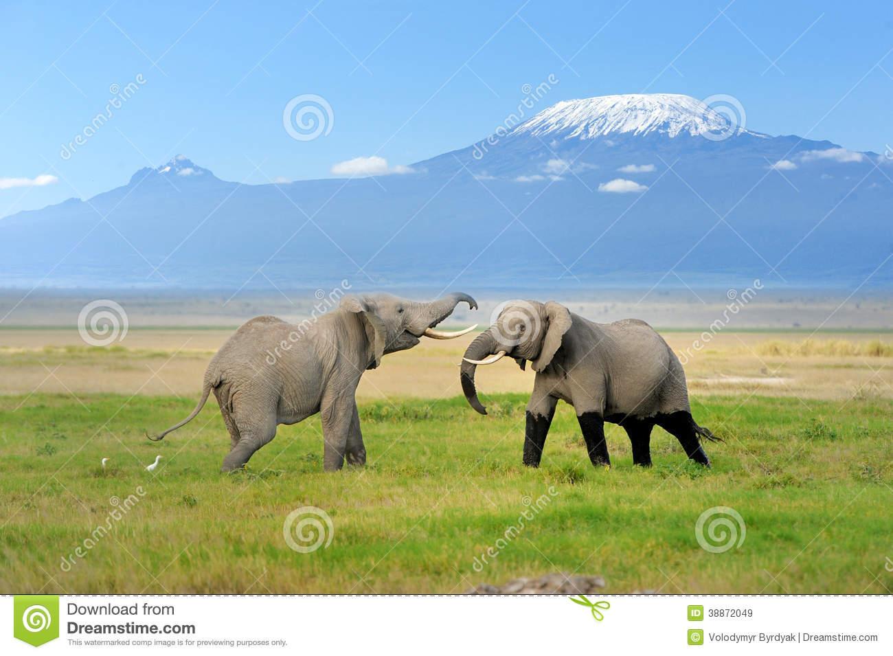 Mount Kilimanjaro clipart #2, Download drawings