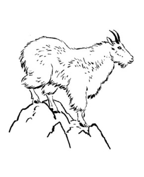 Mount Rainier coloring #12, Download drawings