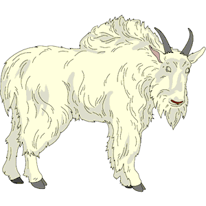 Mountain Goat clipart #9, Download drawings