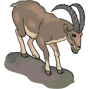 Mountain Goat clipart #1, Download drawings