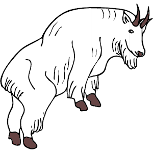 Mountain Goat clipart #16, Download drawings