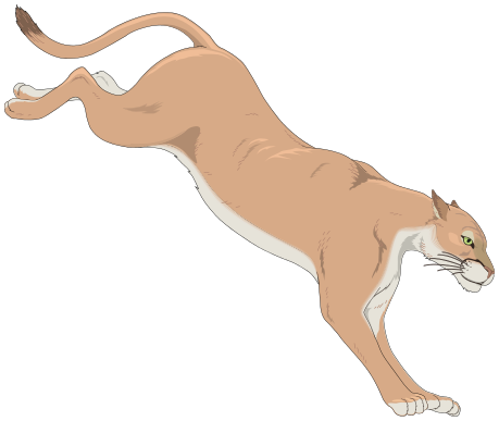 Mountain Lion clipart #1, Download drawings