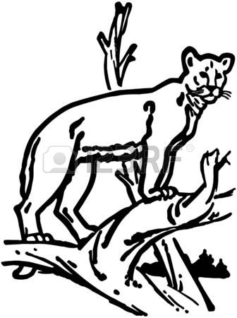 Mountain Lion clipart #2, Download drawings