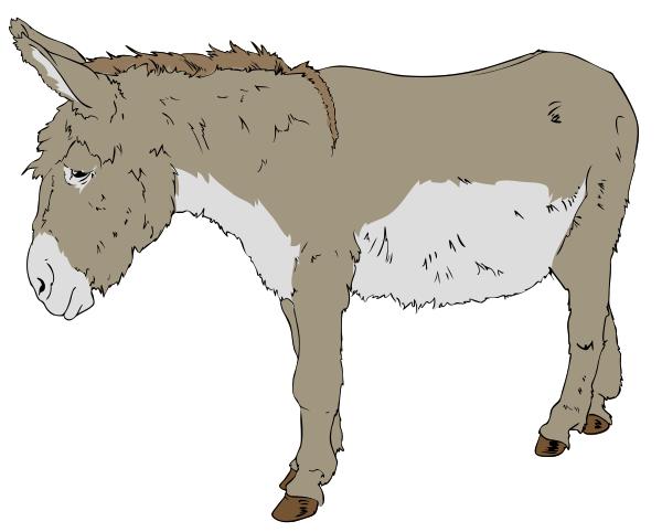 Mule clipart #12, Download drawings