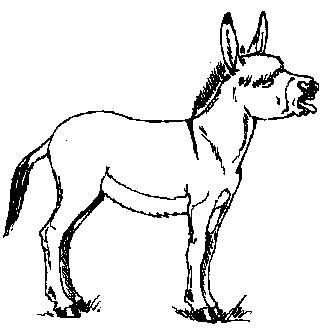 Mule clipart #7, Download drawings