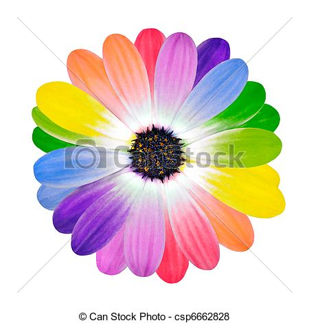 Multi Colour clipart #17, Download drawings