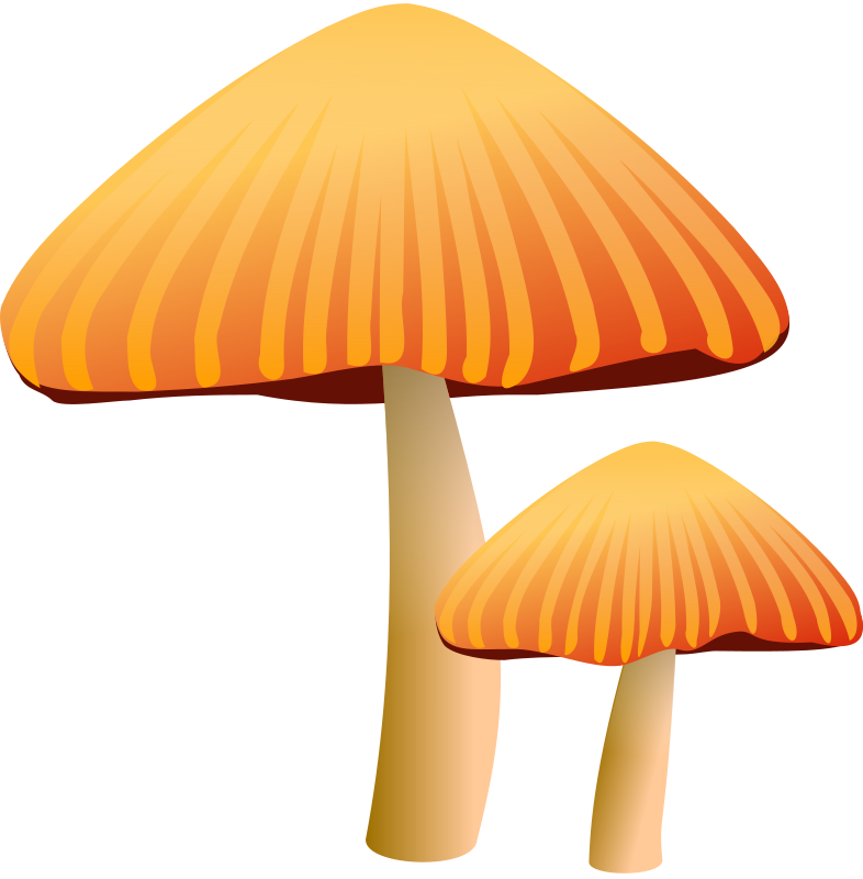 Mushroom clipart #3, Download drawings