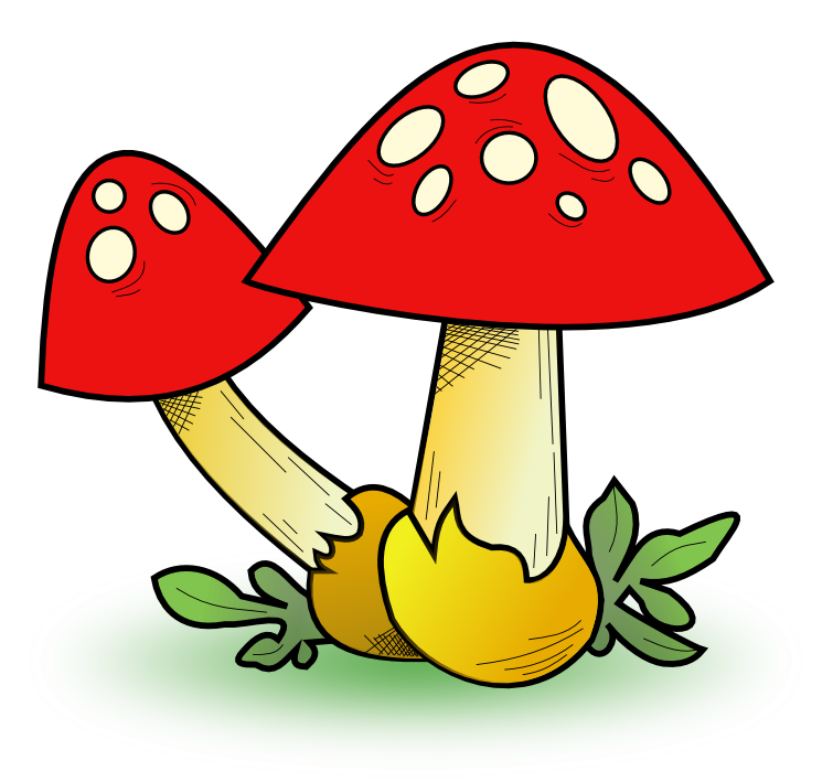 Mushroom clipart #14, Download drawings