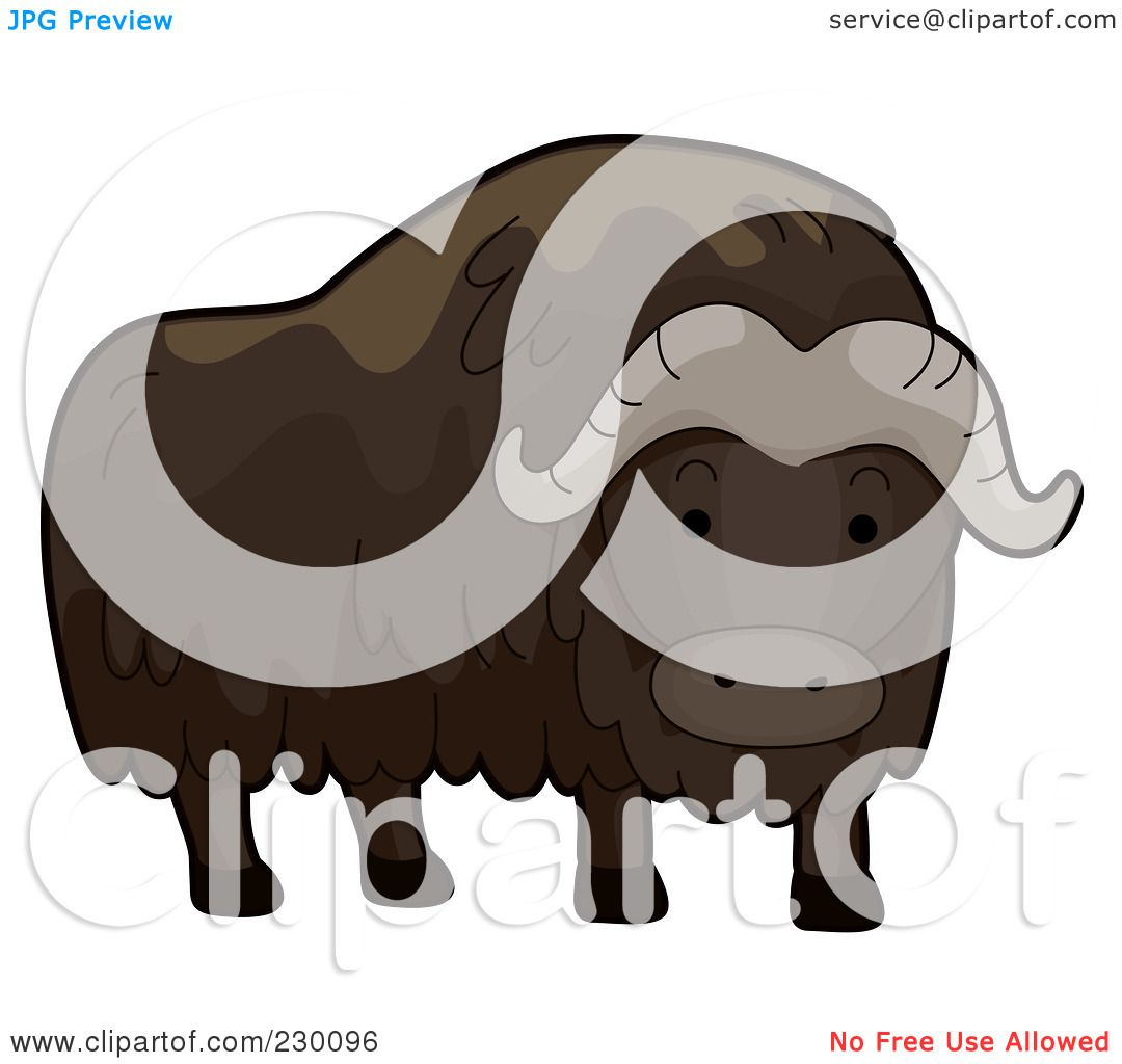 Muskox clipart #10, Download drawings