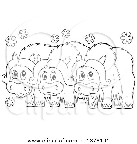 Muskox clipart #12, Download drawings