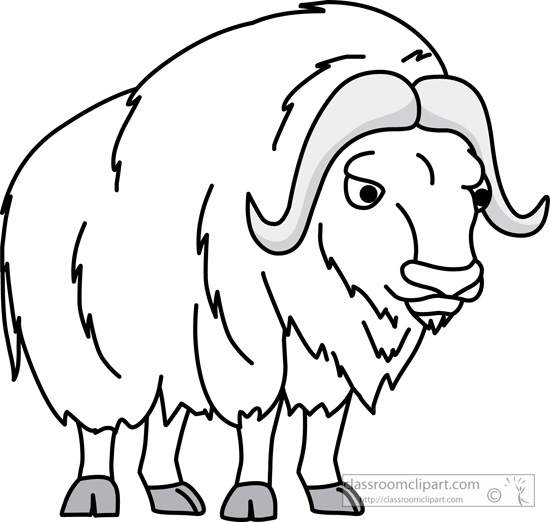 Muskox clipart #4, Download drawings
