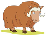 Muskox clipart #5, Download drawings