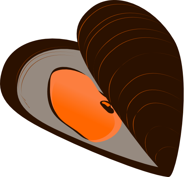 Mussel clipart #19, Download drawings