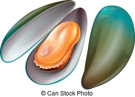 Mussel clipart #17, Download drawings