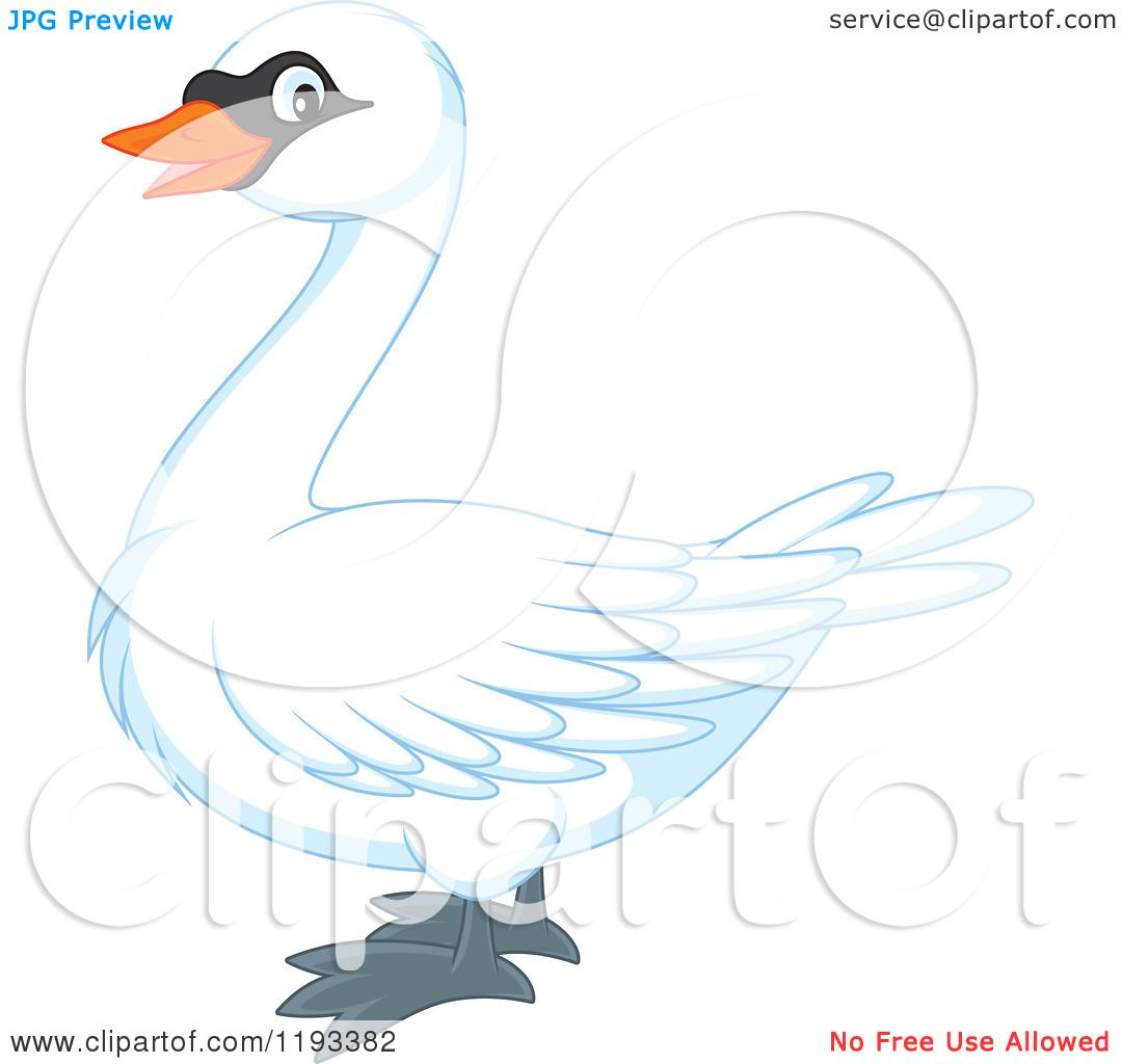 Mute Swan clipart #13, Download drawings