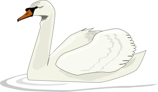 Mute Swan clipart #10, Download drawings