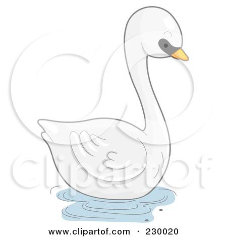 Mute Swan clipart #2, Download drawings