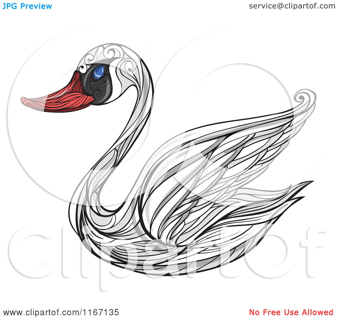 Mute Swan clipart #3, Download drawings