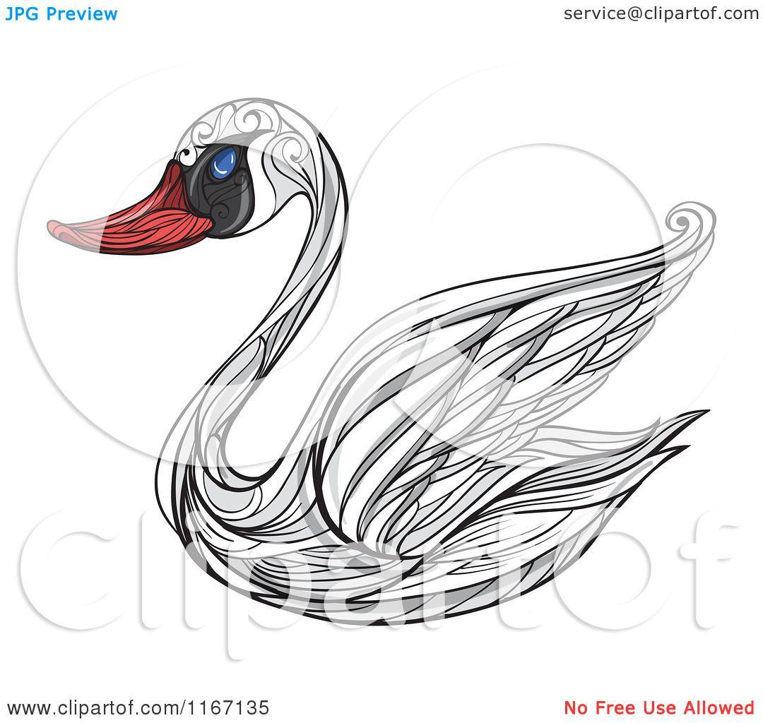 Mute Swan clipart #18, Download drawings
