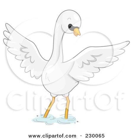 Mute Swan clipart #6, Download drawings