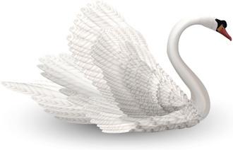 Mute Swan svg #5, Download drawings